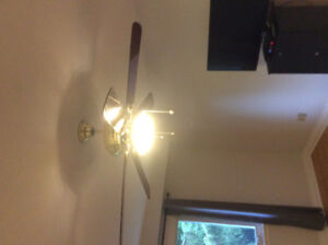A beautiful ceiling fan with light