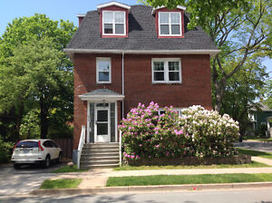 Newly renovated 4 bedroom Apt. Available Sept. 1, 8 month lease!