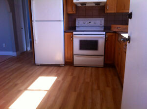 3 beds  Main Floor  for rent in Millwood, immediately.