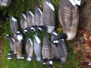 Duck and goose decoys