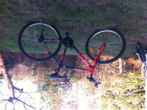 im looking to sell my red mountain bike