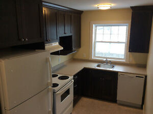 RENOVATED DOWNTOWN 2 BEDROOM APARTMENT!!!