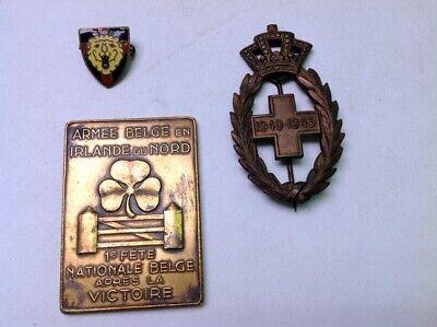Lot de divers insignes militaires armée belge Belgique medal 213m70(1)