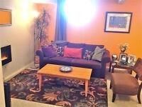Sunny warm basement suite