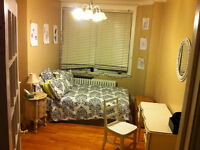 $320- 2br Available 4 1/2 Apt Downtown/Concordia Area
