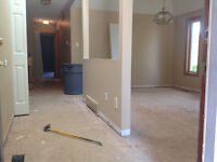WE'RE NOT AMATEURS! 24/7 FLOOR REMOVAL EXPERTS!  289.456.4083