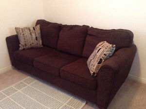 Pull out couch $250  O.B.O