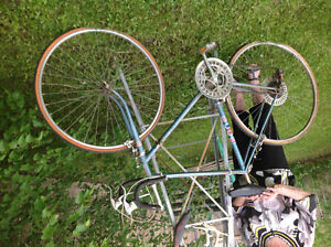 Vintage blue ten speed for a very tall man $35 .