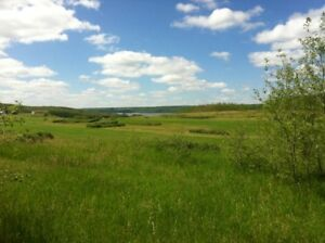 Lake of the Prairies lot for sale