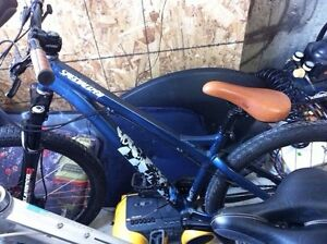 Specialized p2 A1
