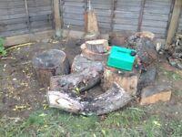 Dry seasoned pine wood burner fire pit stove pile 1