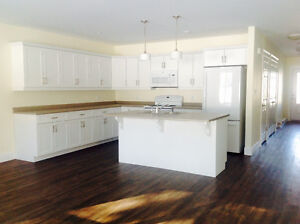 Beautiful  brand  new quiet two bedroom condos in Startford