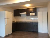 Brand New 3 Bedroom Bi-Level Basement Suite in NE Available Now