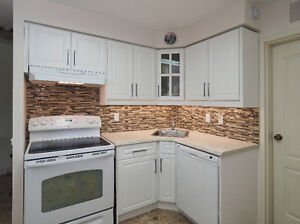Central Location, Beautiful Home .... GREAT VALUE Kitchener / Waterloo Kitchener Area image 5