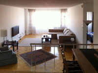 Seeking roommate in 3 1/2. Just steps from Guy-Concordia