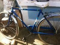Raleigh campus bike