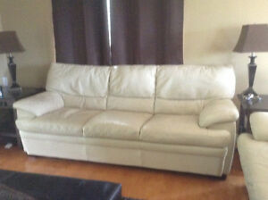 Leather couches.  Great condition