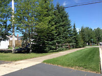 Elmwood area clean quiet residential all inclusive,owner within