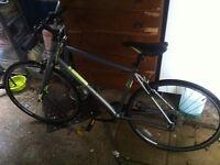 Pinnacle road bike