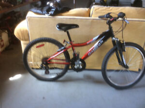Bycle for sale aRaleigh 24in wheel  excellent shape $80