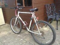 Men's Claud Butler 21Gear Mountain Bike