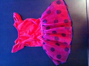Costume de coccinelle / Ladybug costume Gatineau Ottawa / Gatineau Area image 2