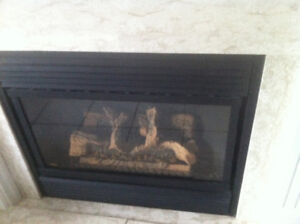 Home gas fireplace Majestic