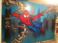 Graffiti artist/mural  painter for hire.