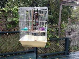 Bird Cage with Stand and Everything and Accessories