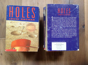 """""""Holes"""" by Louis Sachar - set of 19"""