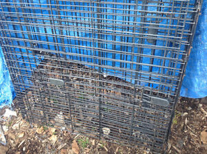 Pet cage ,dog cage , animal cage , 25 dollars