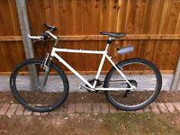 Mountain bike holdsworth