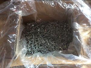 Wood Screws, 6000pcs