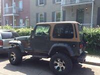 1997 Jeep TJ VUS