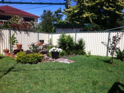 Lawn Mowing & Garden Maintenance Maroubra Eastern Suburbs Preview