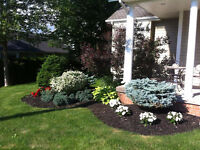 Gardening, Yard maintenance and High end Curb Appeal