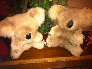 Vintage Real Fur Koala Bears Stuffed Australian Display Animal
