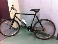 "Miele Mercury Frame bike 26"" wheels and 21 speed..NICE! -"