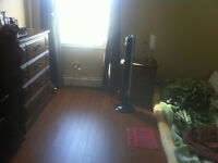 Sunny room for rent
