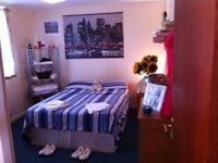 italian home looking for best flatmates , just clean and tidy people