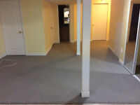 One bedroom basement available near Torbram and Peter Robertson