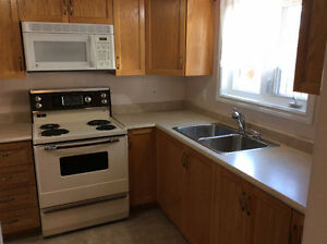 East end one clean bedroom apartment for rent, available Dec.1 St. John's Newfoundland image 1