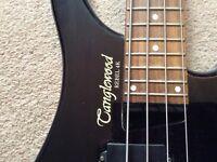 TANGLEWOOD REBEL WITH BERHINGER BASS AMP