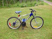 Selling youth bike in excellant shape
