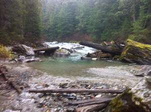 gold claim on lardue river by trout lake