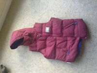 Ladies Superdry Gilet size small