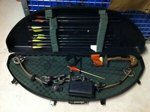 Arc chasse Hoyt 2 cam raptor Carbone limbs hunting bow