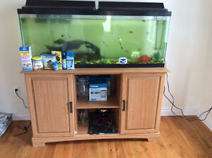50 Gallon tank with stand and fish