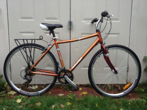 Raleigh Hybrid Commuter