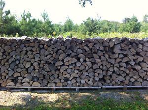 100% Hardwood Firewood Kingston Kingston Area image 2